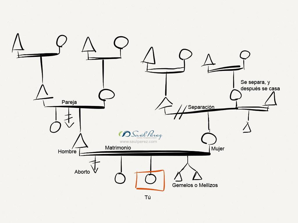 Esoter a moderna transgeneracional el arbol for Como se desarrolla un arbol