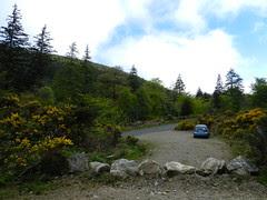 My 7h spin - near Glenmalure