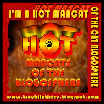 I'm A Hot Mancat