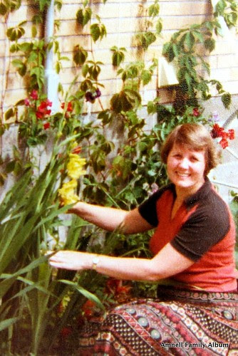 Kanadan gladiolukset by Anna Amnell