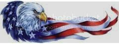 small american flag with eagle Pictures, Images and Photos