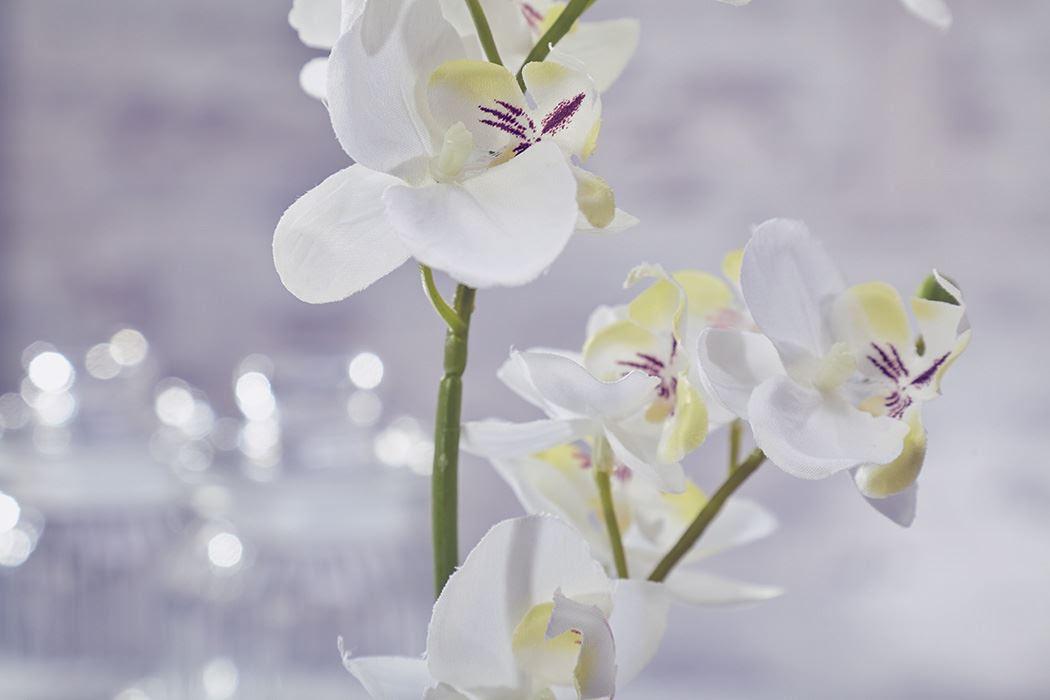 Artificial Flowers Plants Garden Home Orchid Moss \u0026 Root
