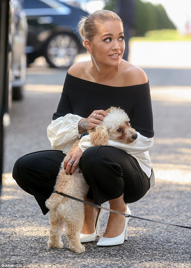Cute as can be: Rita Ora went weak at the knees for an adorable puppy as she filmed for the new series of America's Next Top Model in Queens, New York on Friday