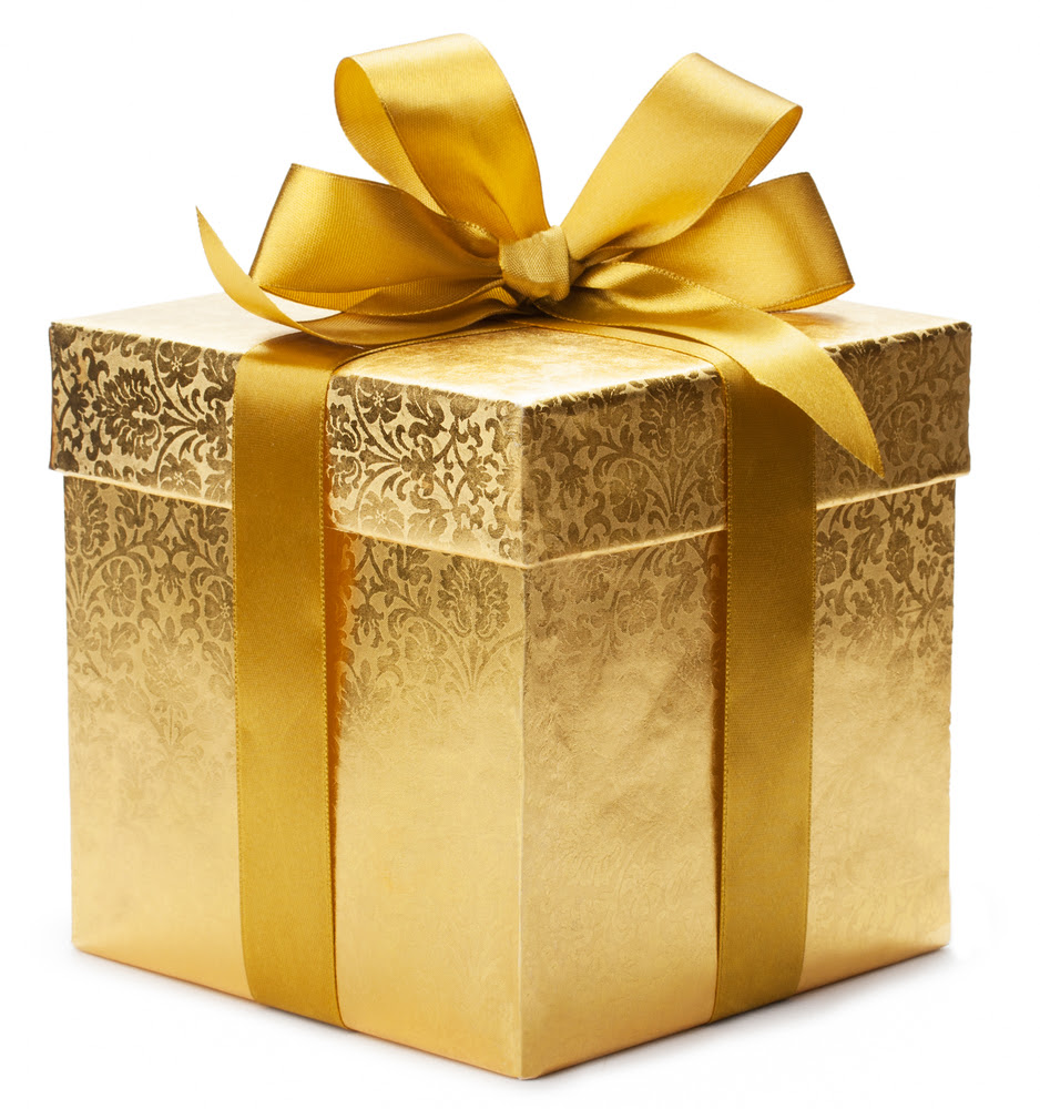 The Family Gives You a Gift…What Do You Do? « Early Intervention Strategies for Success Blog