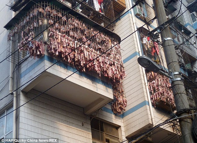 Bringing home the bacon Chinese-style! Butcher cures thousands of ...
