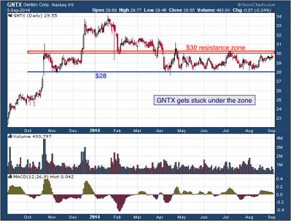 1-year chart of Gentex (NASDAQ: GNTX)