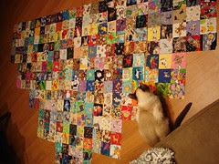 general 1/2 layout for cat charm quilt