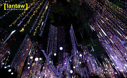 Ayala Lights 9
