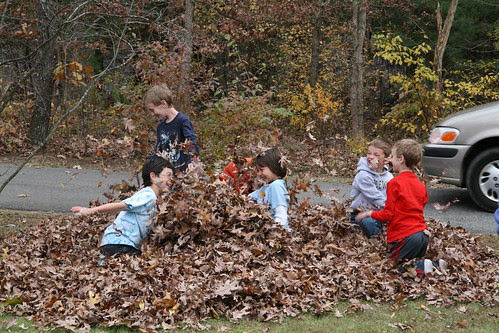 Boys in the leaf pile
