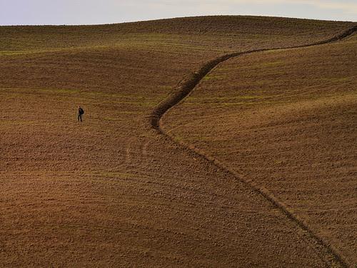 Tuscany soil