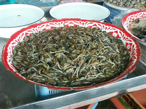 Lingulids, Thai market
