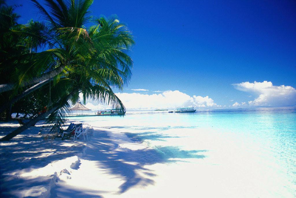 tropici sfondi desktop mare sfondi