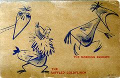 Bird Watchers Society card