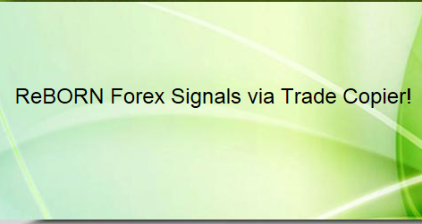 Forex Broker Reviews Forex Peace Army - Is Forex Trading Easy Money