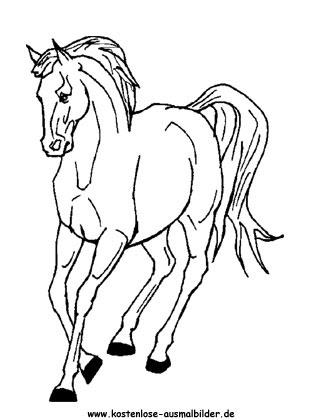 Ausmalbilder Pferd 12 - Tiere zum ausmalen | Malvorlagen ...