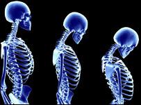 Esqueleto femenino