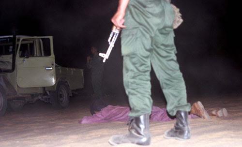 Arresto nel Sahara algerino