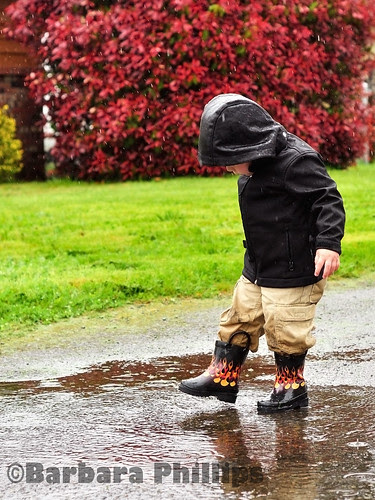 Playing in the rain by Barb Phillips