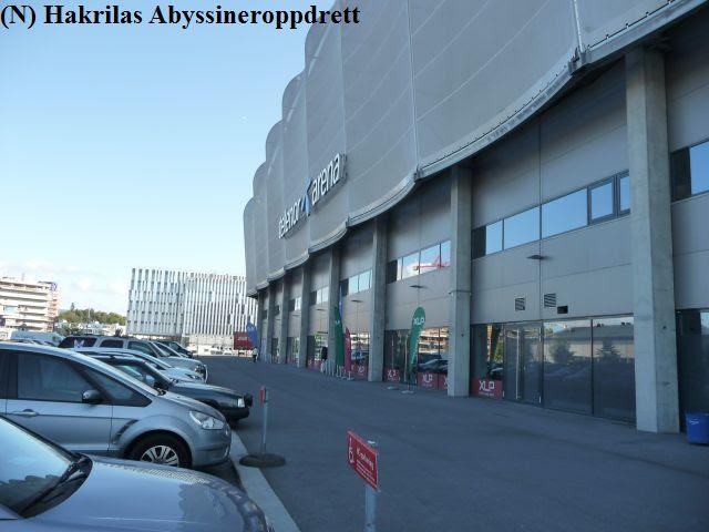 13.09-14.09.2014 var var jeg på Fornebu i Telenor Arena på SWS (Scandinavian Winner Show). I Telenor Arena ble det også arrangert Oslo Pet Show.