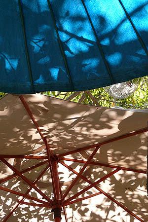 parasols multicolores.jpg
