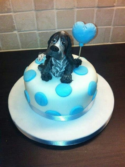 Get well soon cake with fondant cocker spaniel   Cakes by
