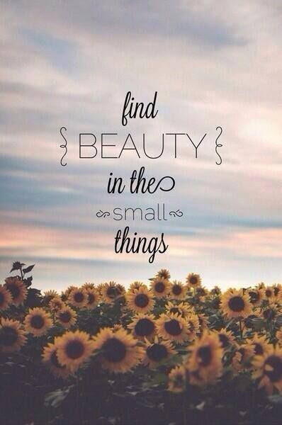Inspirational Quotes #beauty