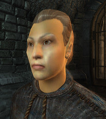 male High Elf 00 default