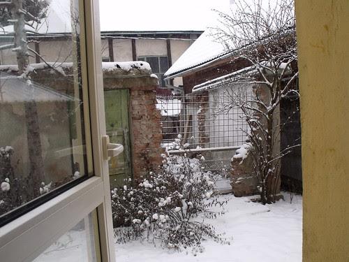 neige 003 by martamaghiar