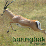 Sadie Hawkins Would Approve of the Leap Year Bonus at South Africas Springbok Casino
