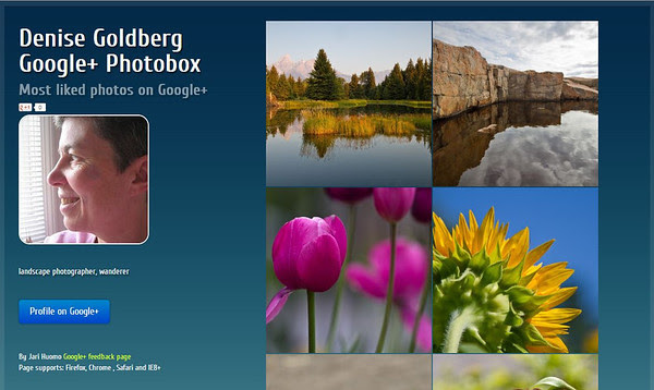 google+ photobox for Denise Goldberg