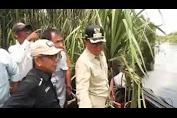 Bupati Indragiri Hilir HM Wardan Menghadiri Panen Madu Sialang.Kec. Gaung