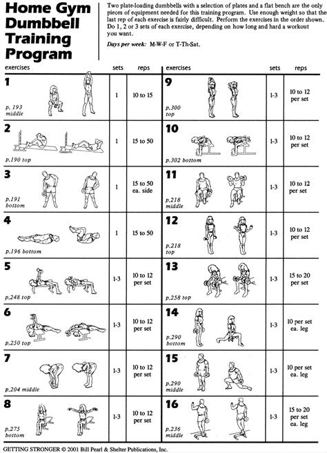 CLICK TO DOWNLOAD A PRINTABLE PDF | Dumbbell workout
