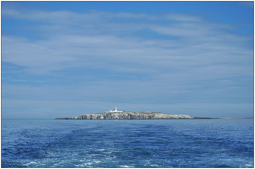 sco_farne_lighthouse
