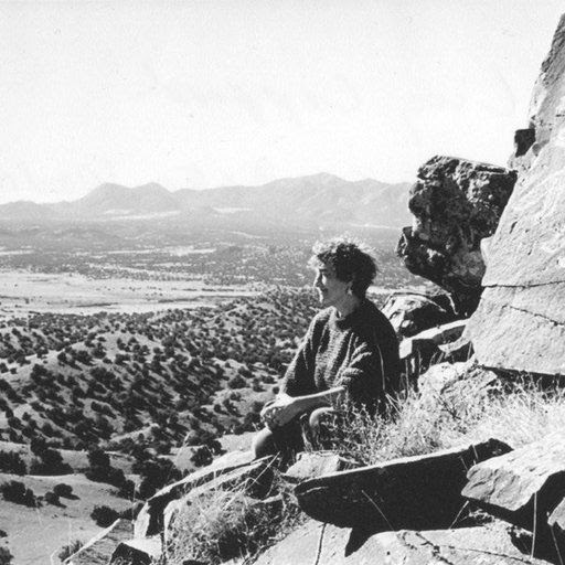 Lucy Lippard (good article)