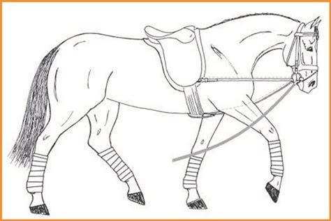 ausmalbilder pferde mit sattel - kostenlose malvorlagen ideen
