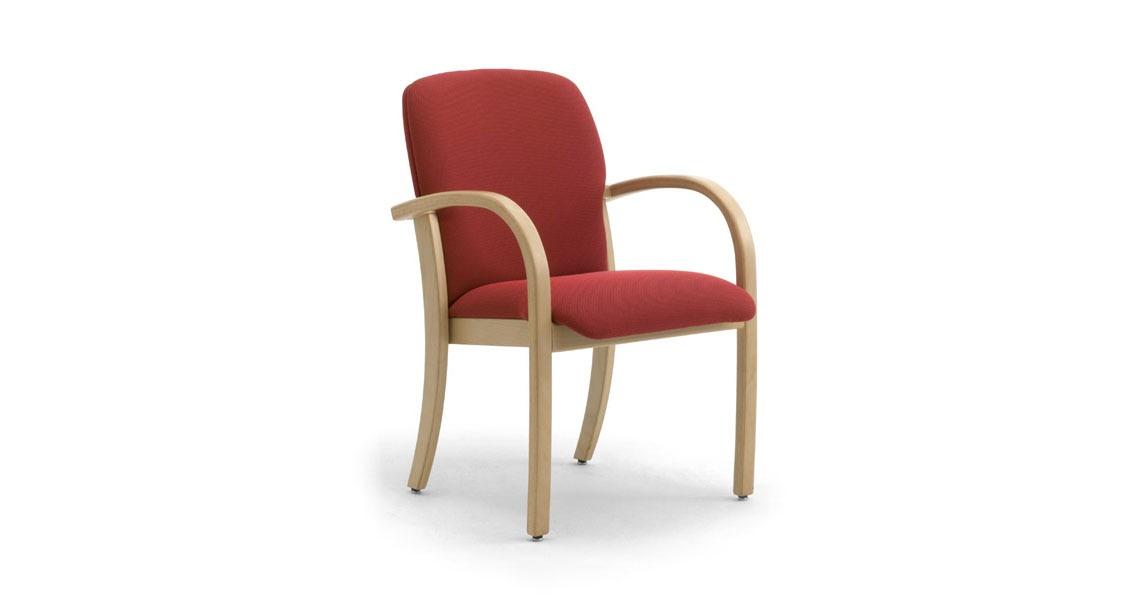 Sedie Per Anziani Con Braccioli Prezzi