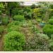 Garten Schawerda: kraeutergarten | 2013-06