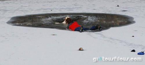 Βούτηξε στην παγωμένη λίμνη για να σώσει τον σκύλο της (4 pics)