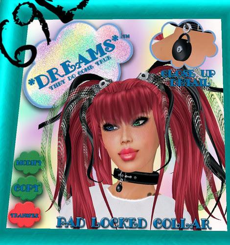 69L Dreams collars on December 9 2009 002