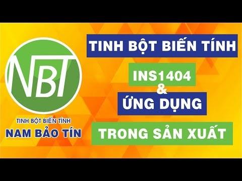Tinh bột biến tính INS1404 & Ứng dụng trong sản xuất | Nam Bảo Tín