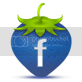 photo facebook-icon.png
