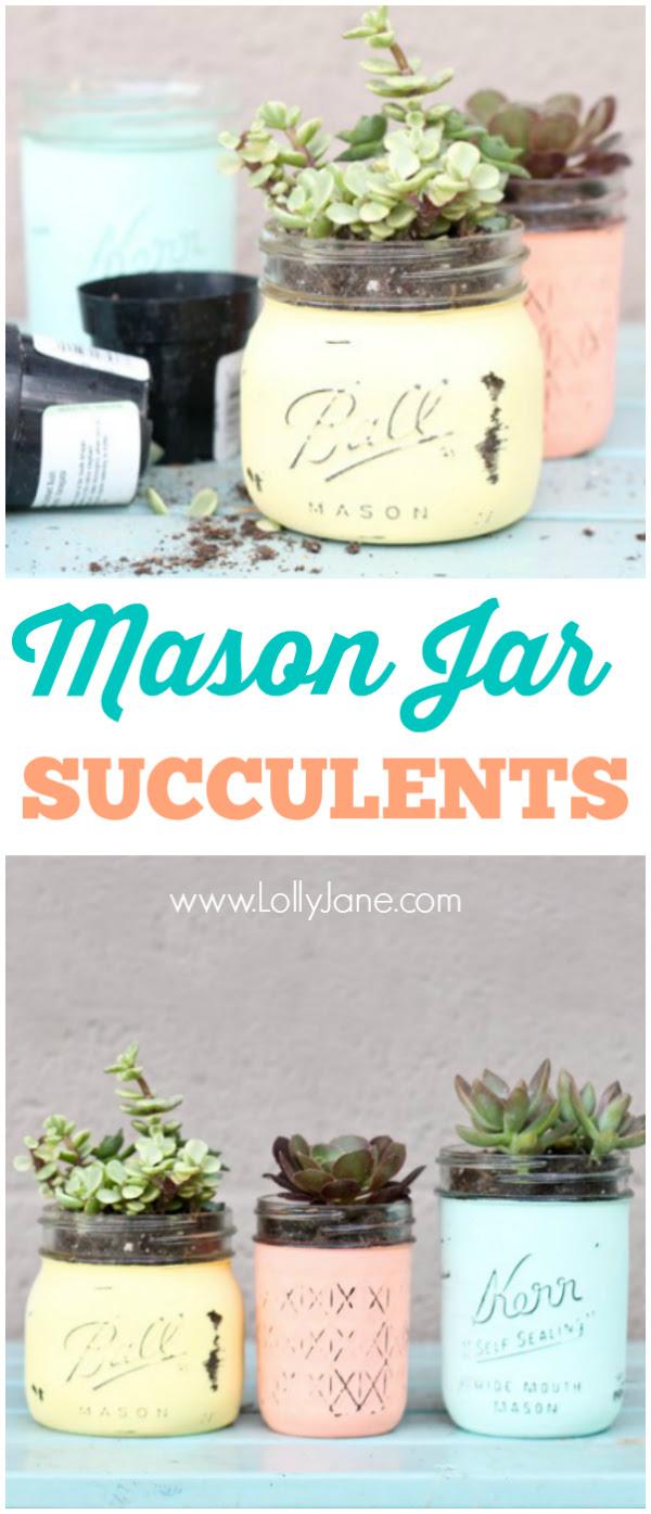 DIY Mason Jar Succulents | Lolly Jane