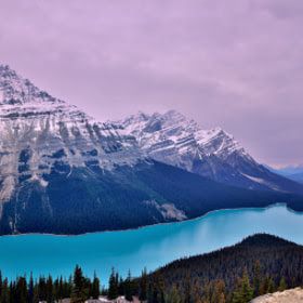 First Snow - Peyto Lake by Shuchun D on 500px.com
