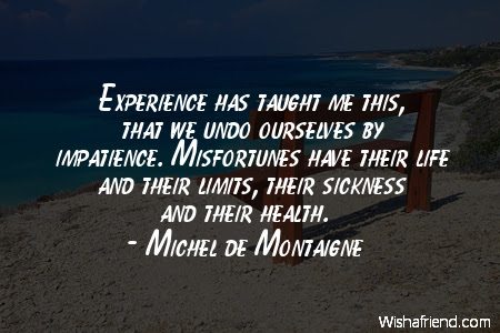 Michel De Montaigne Quote Experience Has Taught Me This That We