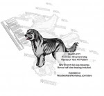 Pyrenean Shepherd Dog Intarsia or Yard Art Woodworking Pattern - fee plans from WoodworkersWorkshop® Online Store - Pyrenean Shepherd Dogs,pets,animals,dogs,breeds,instarsia,yard art,painting wood crafts,scrollsawing patterns,drawings,plywood,plywoodworking plans,woodworkers projects,workshop blueprints