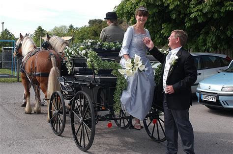 Horse and Carriage   Horse and Carriage Hire Basingstoke