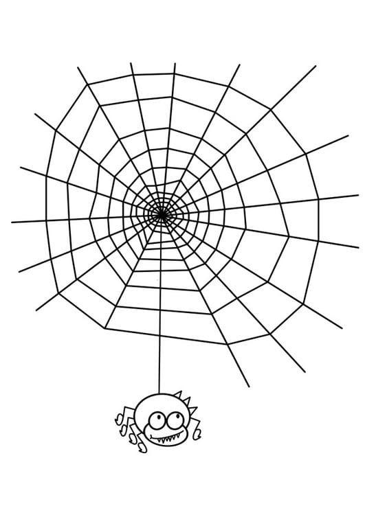 malvorlagen halloween spinnennetz - ausmalbilder
