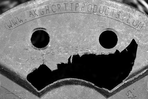 flowerpot face