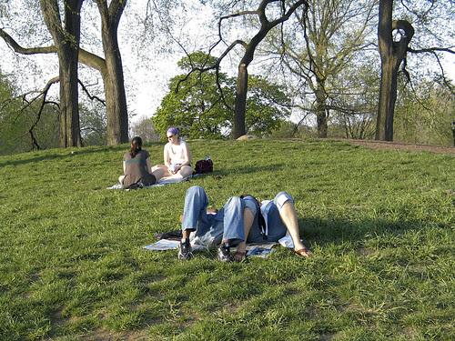 On the grass, Prospect Park