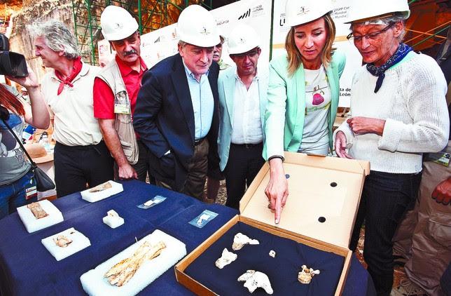 La investigadora Ana Gracia (d.) explica a la consejera de Cultura, al rector de la UBU y al presidente de la Fundación Atapuerca detalles de los fósiles en presencia de los tres codirectores. Luis López Araico